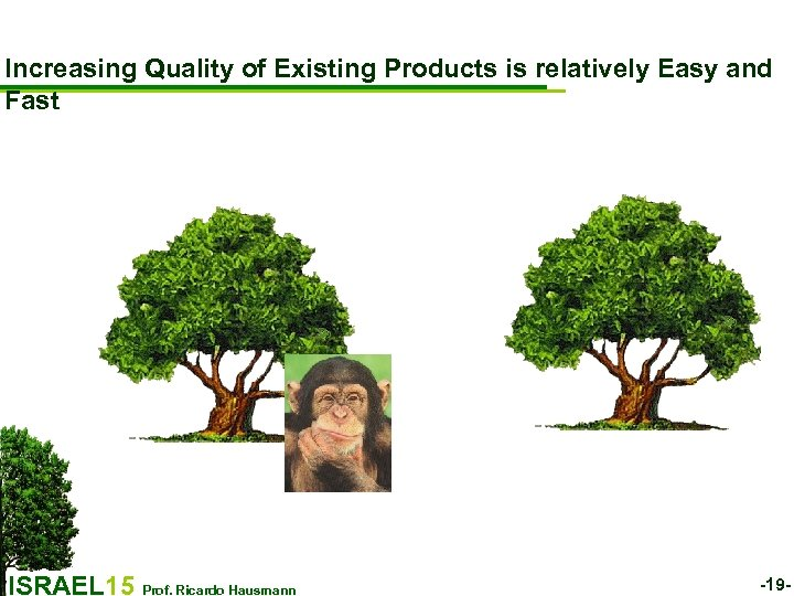 Increasing Quality of Existing Products is relatively Easy and Fast ISRAEL 15 Prof. Ricardo
