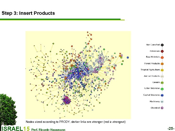 Step 3: Insert Products Nodes sized according to PRODY, darker links are stronger (red