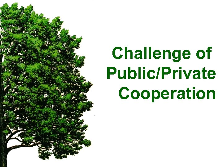 Challenge of Public/Private Cooperation