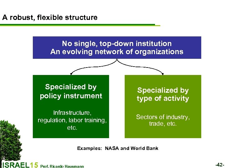 A robust, flexible structure No single, top-down institution An evolving network of organizations Specialized