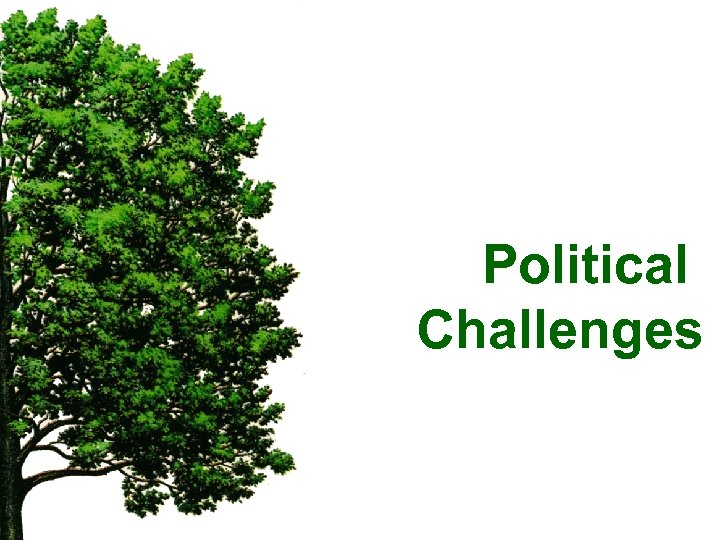 Political Challenges