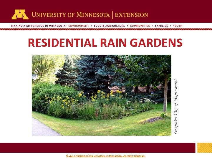 Graphic: City of Maplewood RESIDENTIAL RAIN GARDENS 1 © 2011 Regents of the University