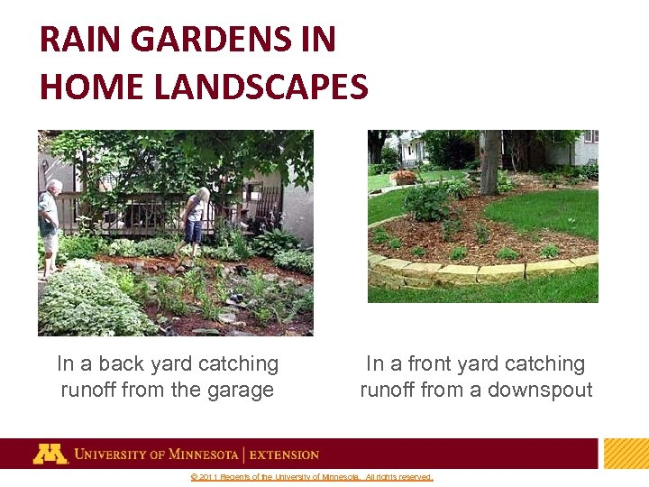 RAIN GARDENS IN HOME LANDSCAPES In a back yard catching runoff from the garage