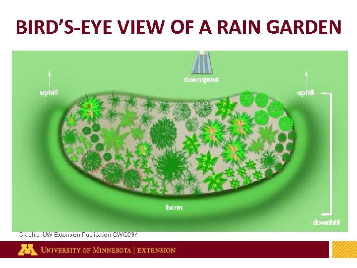 BIRD'S-EYE VIEW OF A RAIN GARDEN Graphic: UW Extension Publication GWQ 037 29