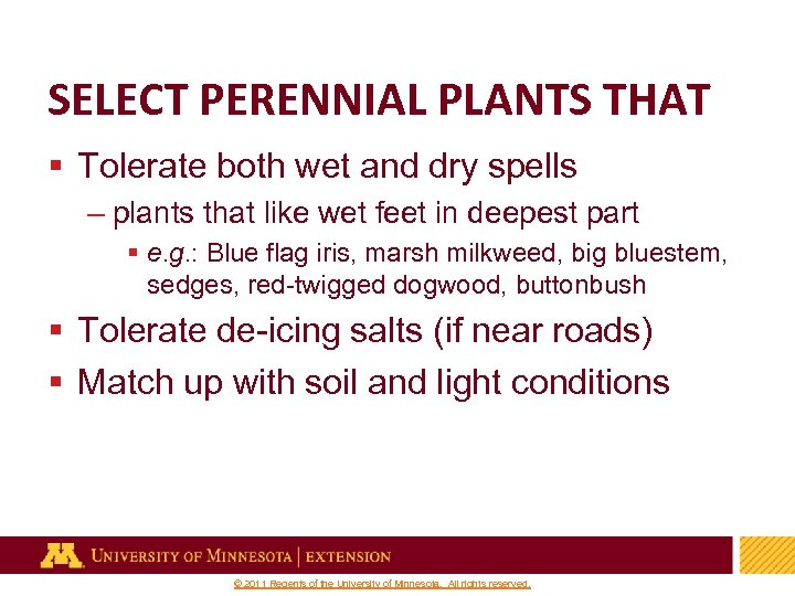 SELECT PERENNIAL PLANTS THAT § Tolerate both wet and dry spells – plants that