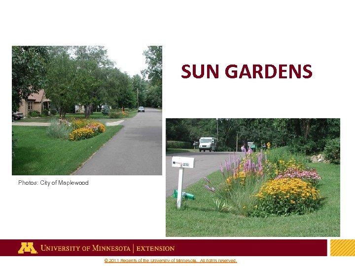 SUN GARDENS Photos: City of Maplewood 37 © 2011 Regents of the University of