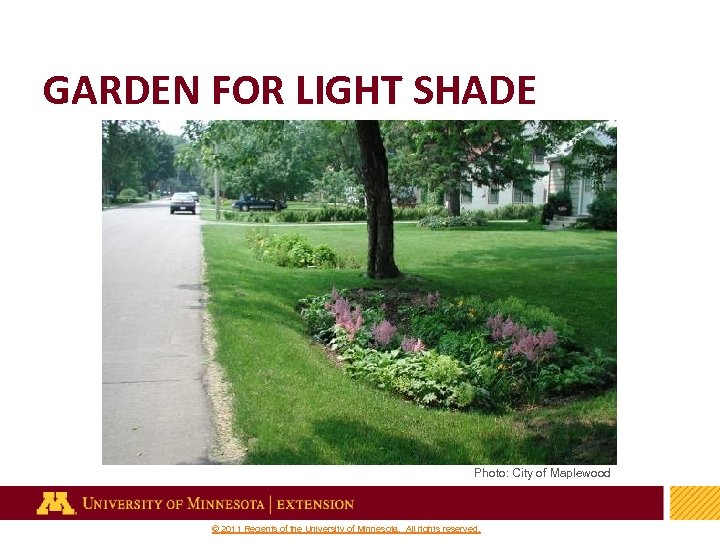 GARDEN FOR LIGHT SHADE Photo: City of Maplewood 38 © 2011 Regents of the