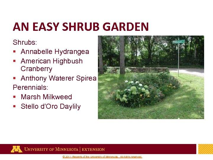 AN EASY SHRUB GARDEN Shrubs: § Annabelle Hydrangea § American Highbush Cranberry § Anthony