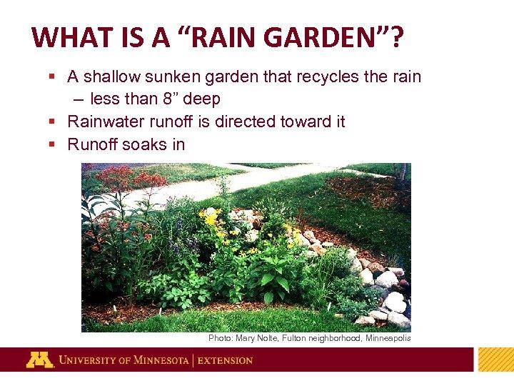 """WHAT IS A """"RAIN GARDEN""""? § A shallow sunken garden that recycles the rain"""