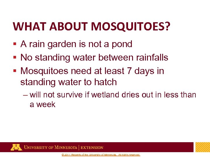 WHAT ABOUT MOSQUITOES? § A rain garden is not a pond § No standing
