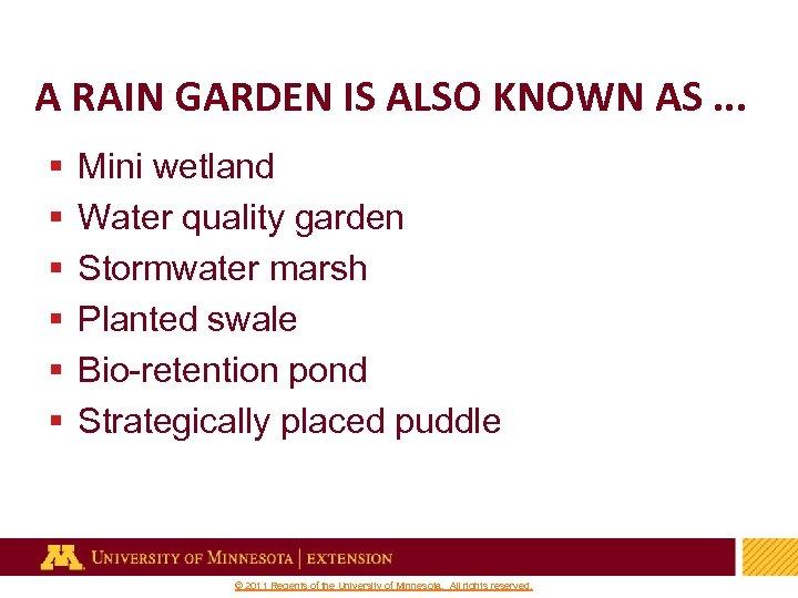 A RAIN GARDEN IS ALSO KNOWN AS. . . § § § Mini wetland