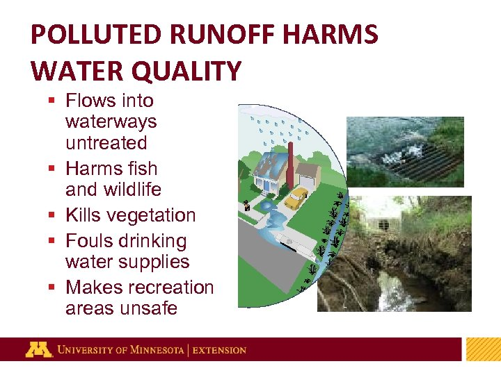 POLLUTED RUNOFF HARMS WATER QUALITY § Flows into waterways untreated § Harms fish and