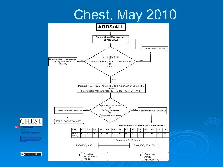 Chest, May 2010
