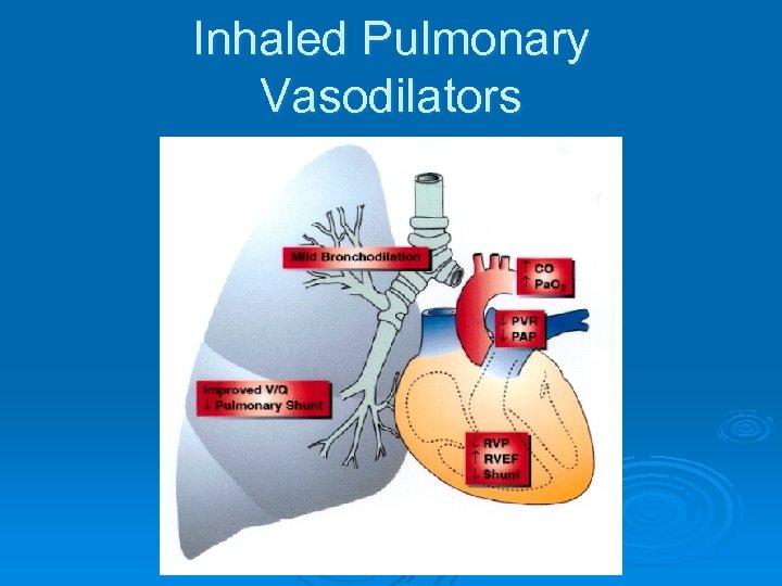 Inhaled Pulmonary Vasodilators