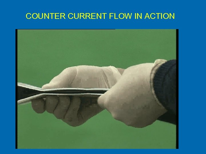 COUNTER CURRENT FLOW IN ACTION