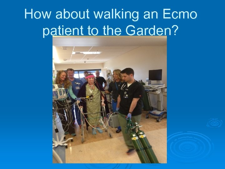 How about walking an Ecmo patient to the Garden?