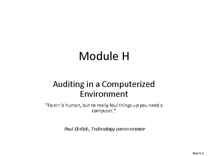 Module H Auditing in a Computerized Environment