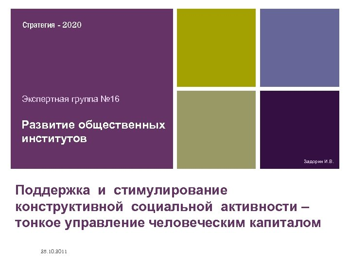 Стратегия - 2020 Экспертная группа № 16 Развитие общественных институтов Задорин И. В. Поддержка