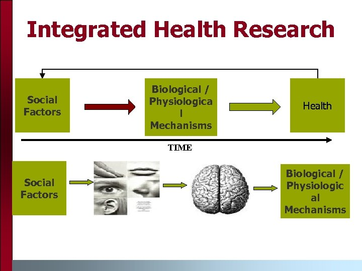 Integrated Health Research Social Factors Biological / Physiologica l Mechanisms Health TIME Social Factors