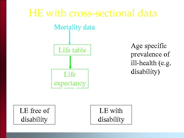HE with cross-sectional data Mortality data Age specific prevalence of ill-health (e. g. disability)