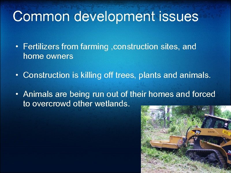 Common development issues • Fertilizers from farming , construction sites, and home owners •