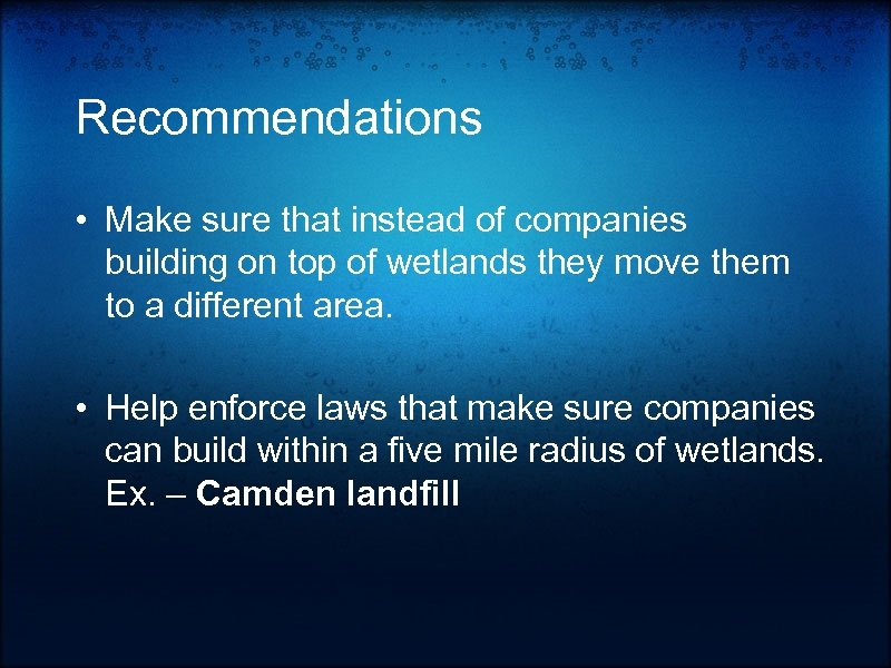 Recommendations • Make sure that instead of companies building on top of wetlands they