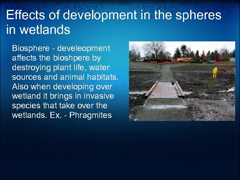 Effects of development in the spheres in wetlands Biosphere - develeopment affects the bioshpere