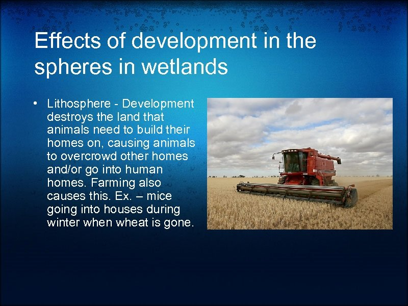 Effects of development in the spheres in wetlands • Lithosphere - Development destroys the