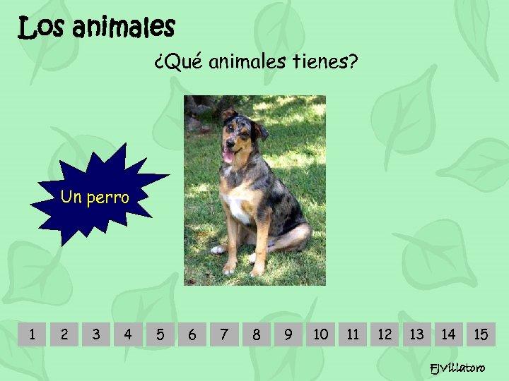 Los animales ¿Qué animales tienes? Un perro 1 2 3 4 5 6 7