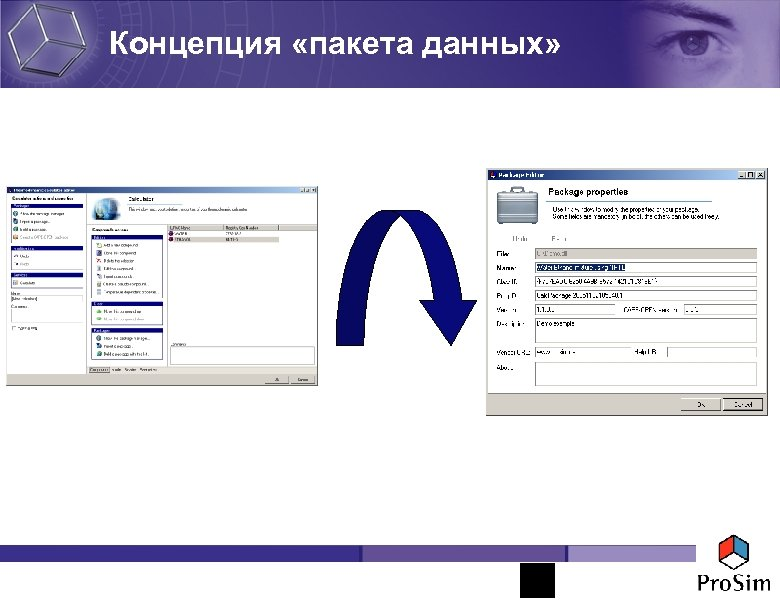 Концепция «пакета данных»
