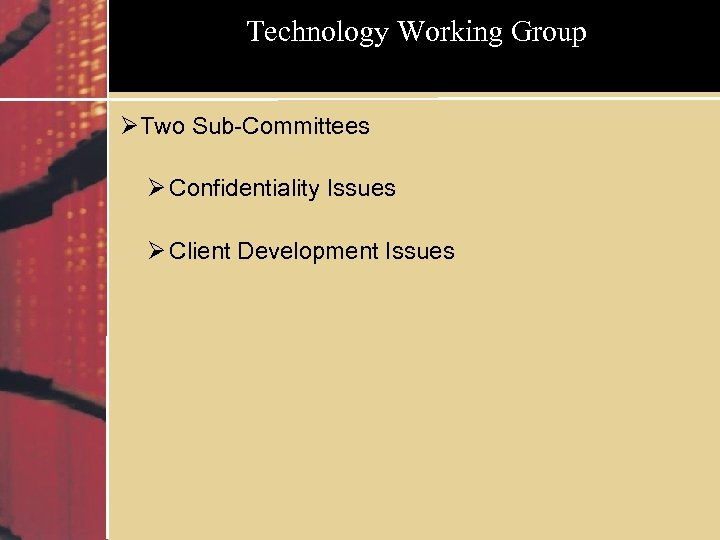 Technology Working Group ØTwo Sub-Committees Ø Confidentiality Issues Ø Client Development Issues