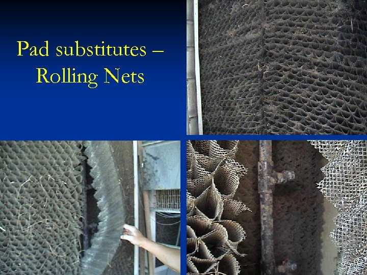 Pad substitutes – Rolling Nets