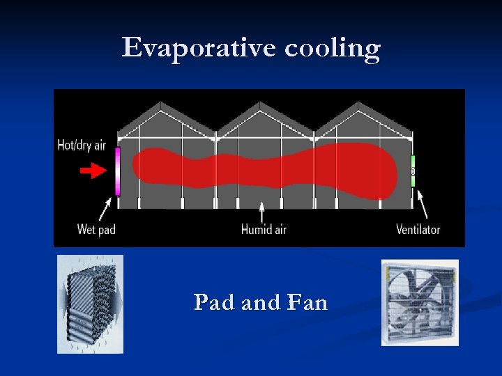 Evaporative cooling Pad and Fan