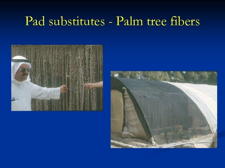 Pad substitutes - Palm tree fibers