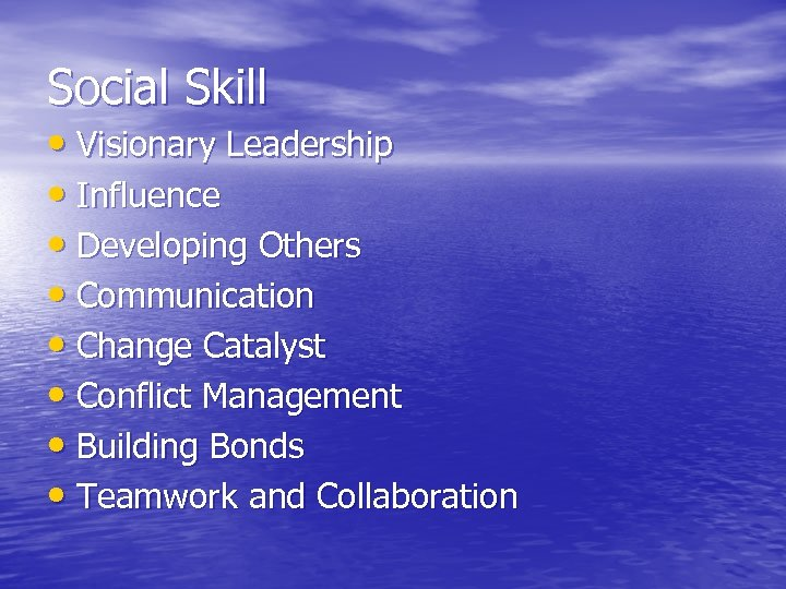 Social Skill • Visionary Leadership • Influence • Developing Others • Communication • Change