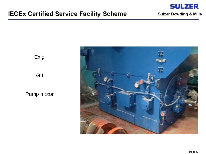 IECEx Certified Service Facility Scheme Sulzer Dowding & Mills Ex p GII Pump motor