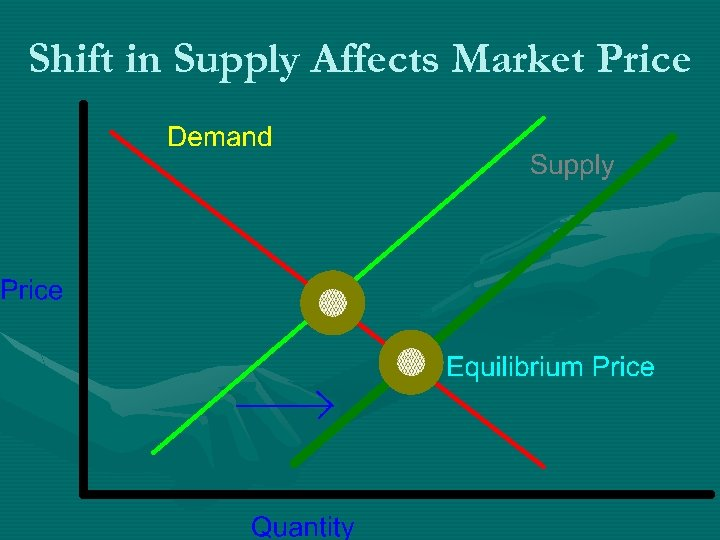 Shift in Supply Affects Market Price
