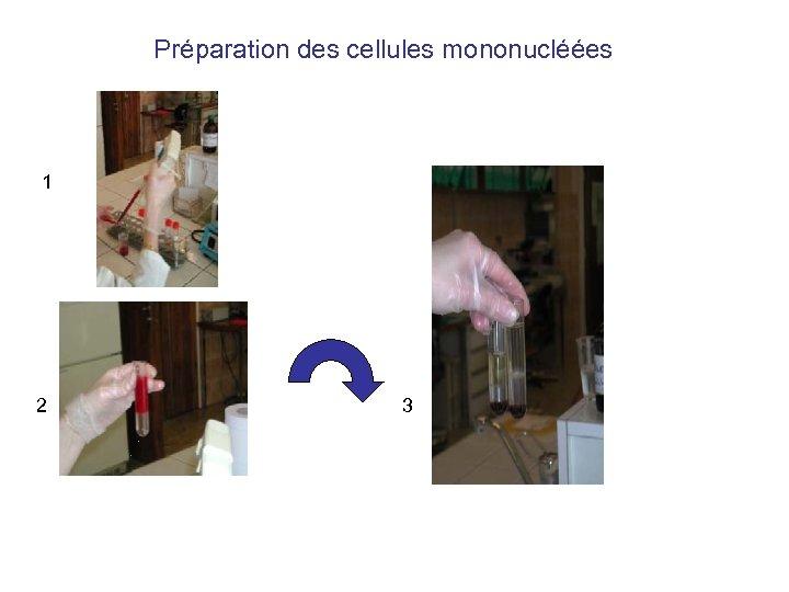 Préparation des cellules mononucléées 1 2 3