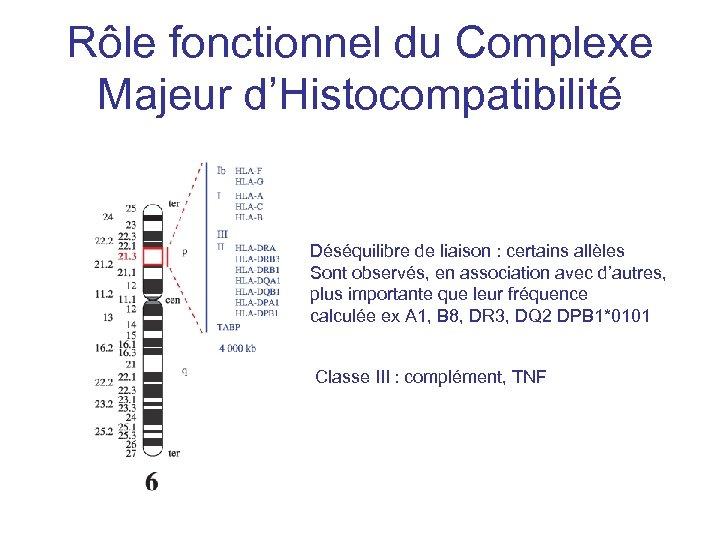 Rôle fonctionnel du Complexe Majeur d'Histocompatibilité Déséquilibre de liaison : certains allèles Sont observés,