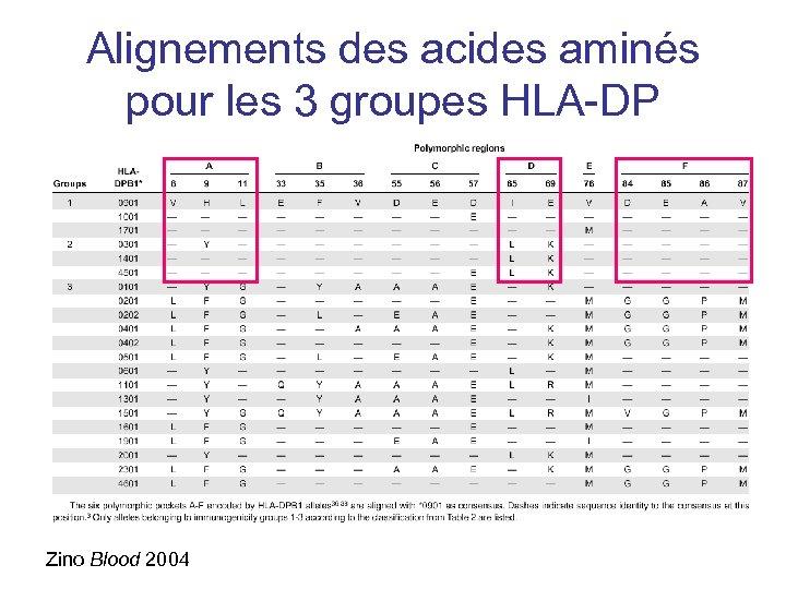 Alignements des acides aminés pour les 3 groupes HLA-DP Zino Blood 2004