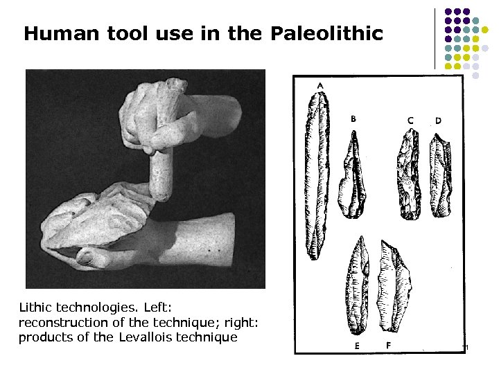 Human tool use in the Paleolithic Lithic technologies. Left: reconstruction of the technique; right: