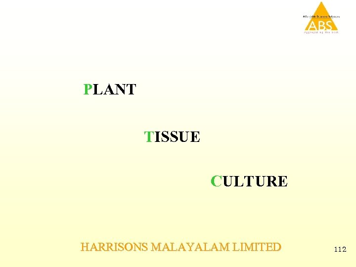 PLANT TISSUE CULTURE HARRISONS MALAYALAM LIMITED 112