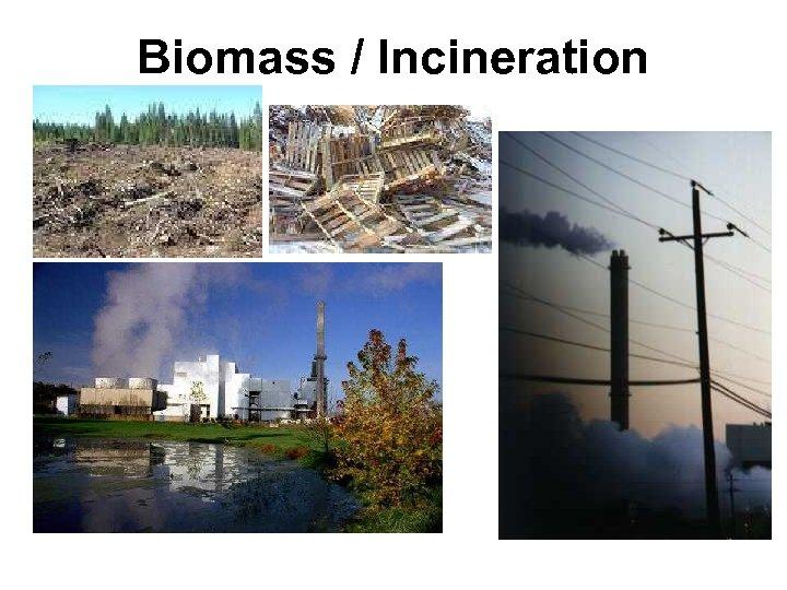 Biomass / Incineration