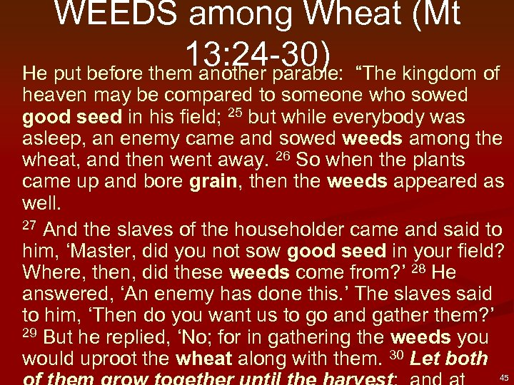 "WEEDS among Wheat (Mt 13: 24 -30) ""The kingdom of He put before them"