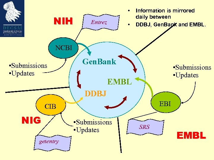 • NIH Entrez • Information is mirrored daily between DDBJ, Gen. Bank and