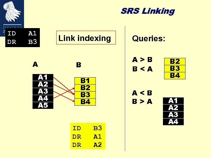 SRS Linking ID DR A 1 B 3 Link indexing A A 1 A