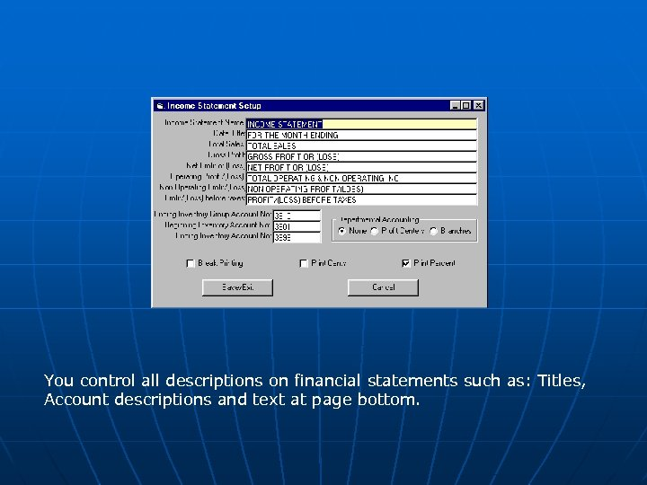 You control all descriptions on financial statements such as: Titles, Account descriptions and text
