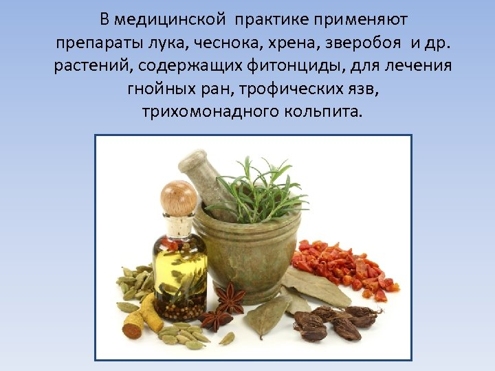 В медицинской практике применяют препараты лука, чеснока, хрена, зверобоя и др. растений, содержащих фитонциды,