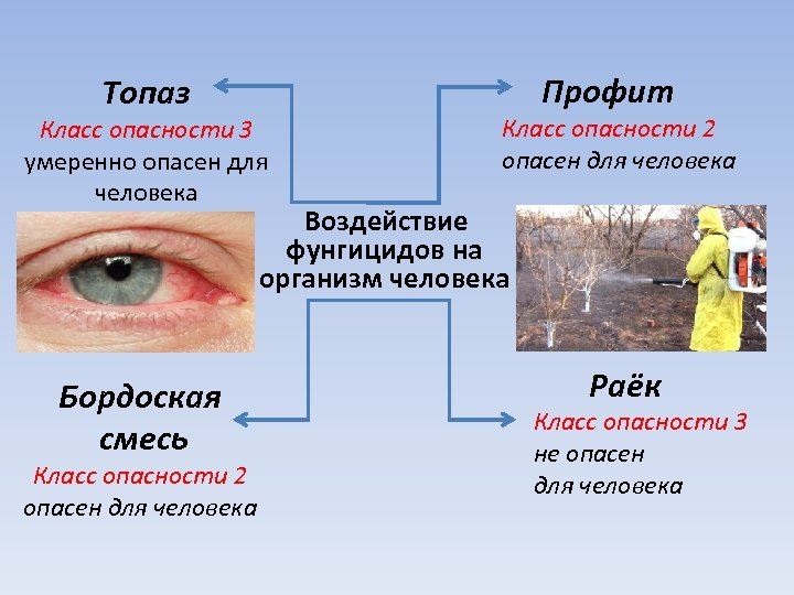Топаз Профит Класс опасности 3 умеренно опасен для человека Класс опасности 2 опасен для
