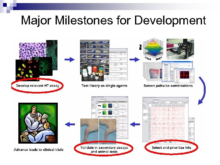 Major Milestones for Development